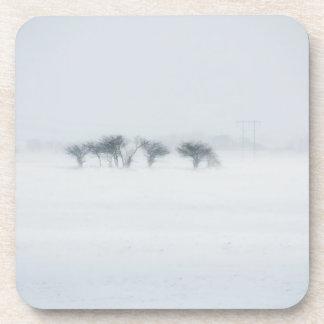 Paisaje de la tormenta del invierno posavaso