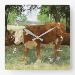 Paisaje de la vaca de Tejas Reloj