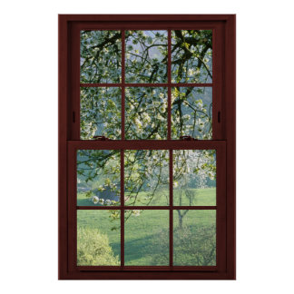 Paisaje de la ventana de imagen - flores de cereza poster