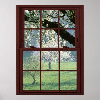 Paisaje de la ventana de imagen - flores de cerezo posters