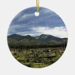 Paisaje de las montañas en verano ornamento para arbol de navidad