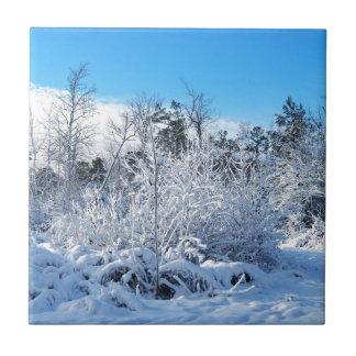 Paisaje de las nevadas del invierno de Carolina Azulejo Cuadrado Pequeño