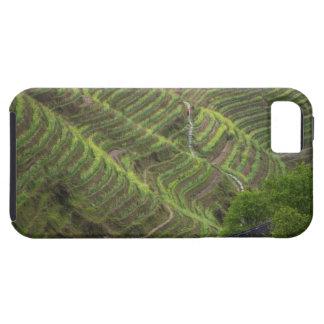 Paisaje de las terrazas del arroz en la montaña, iPhone 5 coberturas