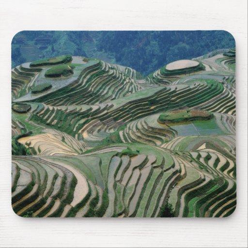 Paisaje de las terrazas del arroz en la montaña, alfombrilla de raton