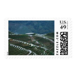 Paisaje de las terrazas en la montaña, 2 del arroz sellos postales