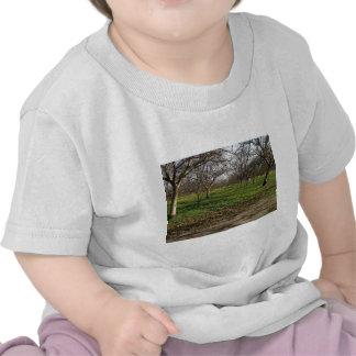 paisaje de los árboles de la huerta camisetas