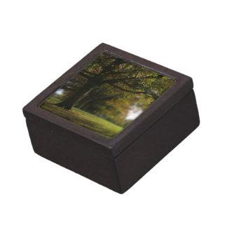Paisaje de los árboles del otoño cajas de joyas de calidad