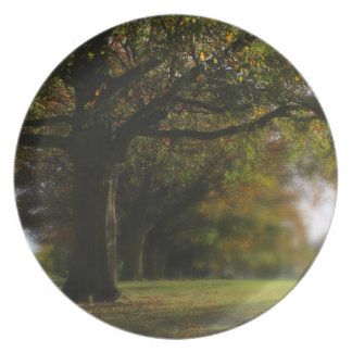 Paisaje de los árboles del otoño plato