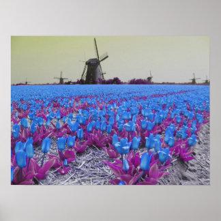 Paisaje de los molinoes de viento de los tulipanes poster