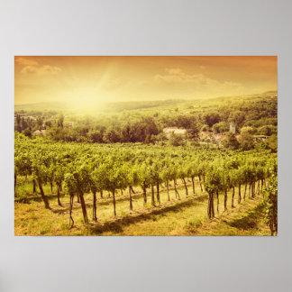 Paisaje de los viñedos póster