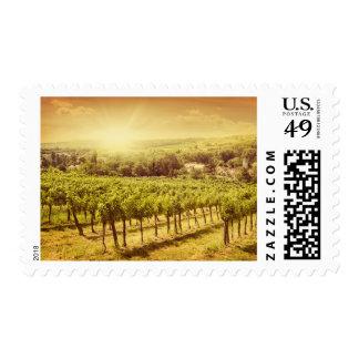 Paisaje de los viñedos sellos postales