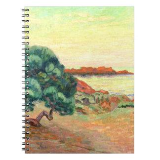 Paisaje de Midi, 1898 (aceite en lona) Libreta
