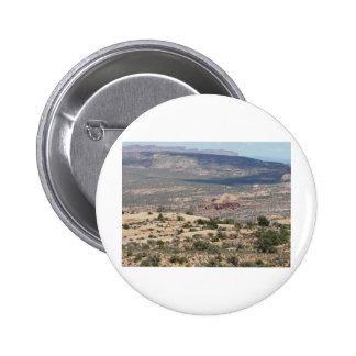 paisaje de Moab Pins