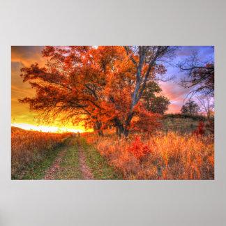 paisaje de Turner en poster del país de Madison Póster