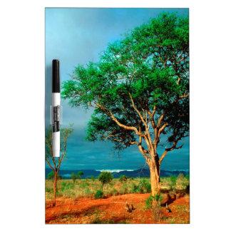 Paisaje del africano del árbol pizarra blanca