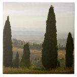 Paisaje del balanceo, Toscana, Italia 2 Azulejo Cuadrado Grande