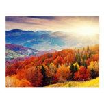 Paisaje del bosque del otoño de la montaña postal
