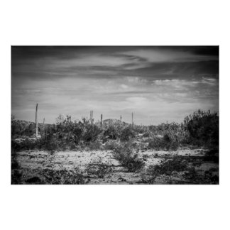 Paisaje del cactus posters