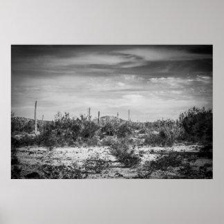 Paisaje del cactus póster
