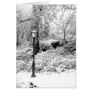 Paisaje del Central Park del invierno Felicitación