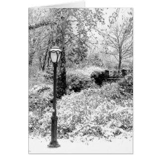 Paisaje del Central Park del invierno Tarjetón