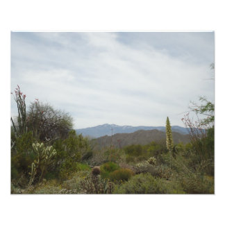 Paisaje del desierto arte con fotos