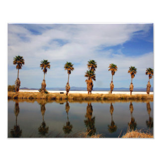 Paisaje del desierto de Mojave 11x14 Impresiones Fotograficas
