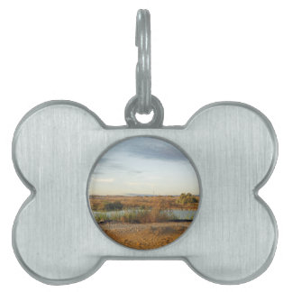 paisaje del desierto placas mascota