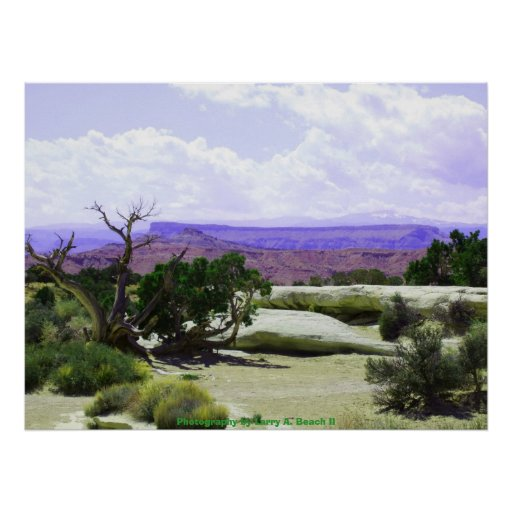 Paisaje del desierto poster