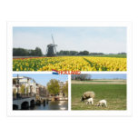 Paisaje del holandés de Amsterdam de los tulipanes Postal