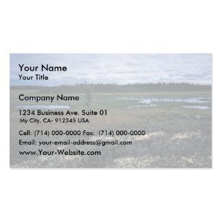 Paisaje del humedal tarjetas de visita