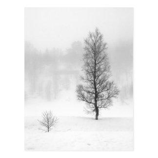 Paisaje del invierno con el árbol en niebla postal