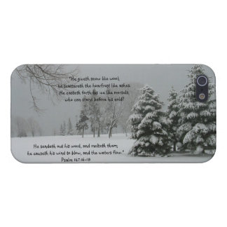 Paisaje del invierno con escritura iPhone 5 coberturas