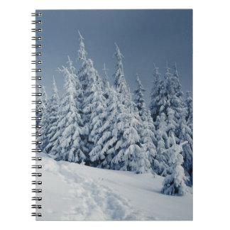 Paisaje del invierno cuadernos