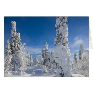 Paisaje del invierno en Lappland Felicitaciones