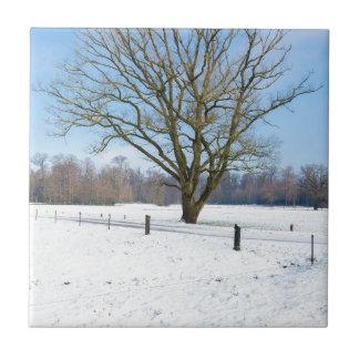 Paisaje del invierno Nevado con el árbol desnudo y Azulejo Cuadrado Pequeño