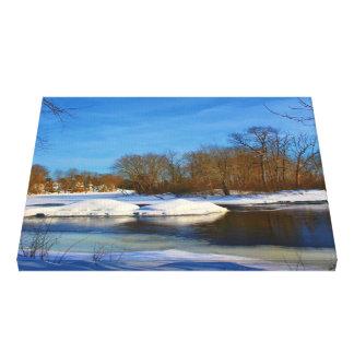Paisaje del invierno - parque de Webster Impresión En Lona