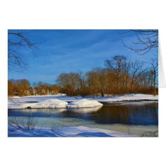 Paisaje del invierno - parque de Webster Tarjeta De Felicitación