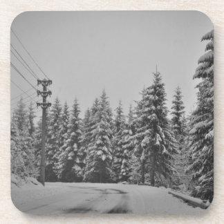 Paisaje del invierno posavaso
