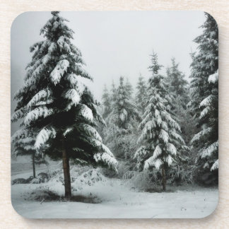 Paisaje del invierno posavasos
