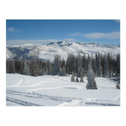 Paisaje del invierno tarjeta postal