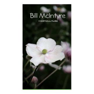 Paisaje del jardín de las anémonas plantillas de tarjetas de visita