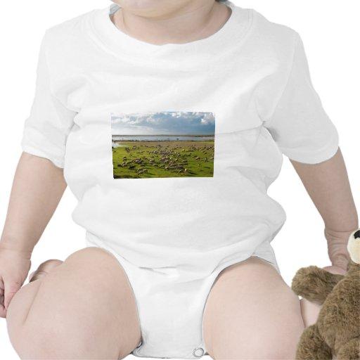 Paisaje del lago Vistonida del pastor de las cabra Trajes De Bebé