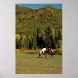 Paisaje del otoño con el caballo posters
