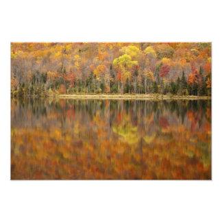 Paisaje del otoño con el lago, Vermont, los E.E.U. Cojinete