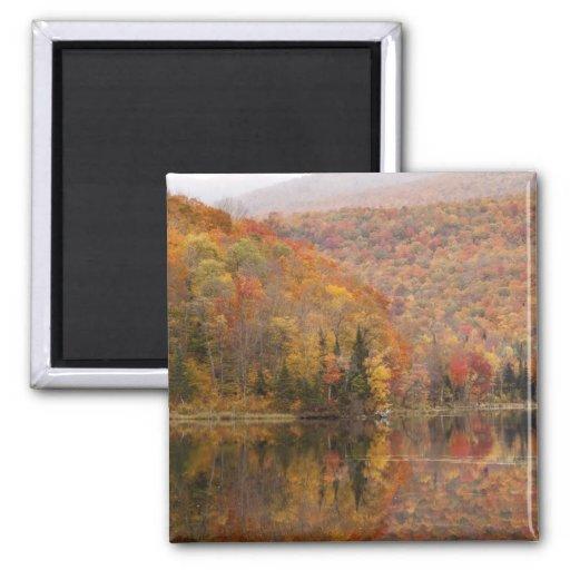 Paisaje del otoño con el lago, Vermont, los E.E.U. Imanes Para Frigoríficos