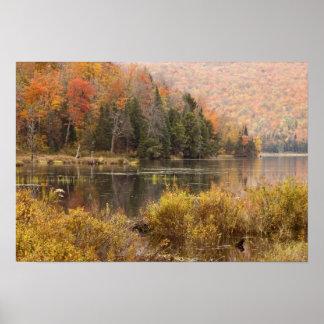 Paisaje del otoño con el lago, Vermont, los E.E.U. Impresiones