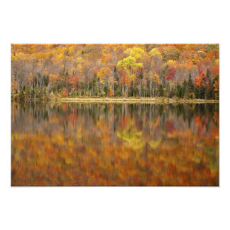 Paisaje del otoño con el lago Vermont los E E U Arte Fotográfico