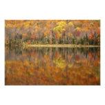 Paisaje del otoño con el lago, Vermont, los E.E.U. Arte Con Fotos