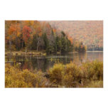 Paisaje del otoño con el lago, Vermont, los E.E.U. Póster